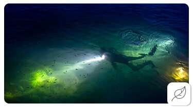 History of Ocean Exploration