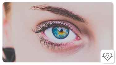 How does the Human Eye Work?